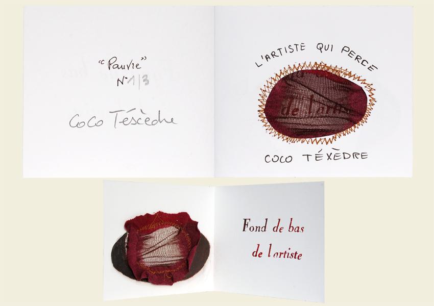 L'artiste-qui-perce-Coco-Téxèdre-2015